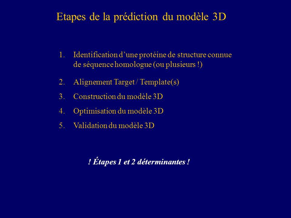 Etapes de la prédiction du modèle 3D 1.Identification dune protéine de structure connue de séquence homologue (ou plusieurs !) 2.Alignement Target / Template(s) 3.Construction du modèle 3D 4.Optimisation du modèle 3D 5.Validation du modèle 3D .