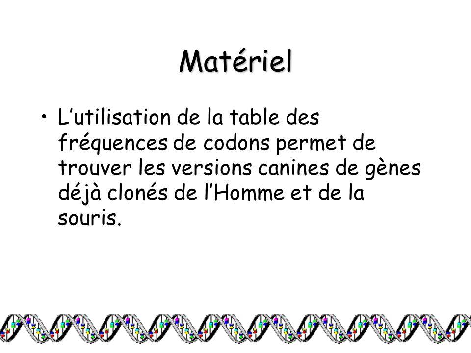 Matériel Lutilisation de la table des fréquences de codons permet de trouver les versions canines de gènes déjà clonés de lHomme et de la souris.