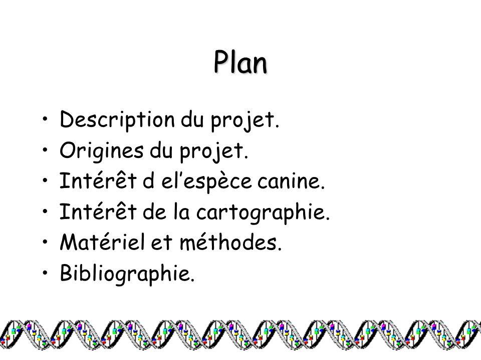 Plan Description du projet. Origines du projet. Intérêt d elespèce canine. Intérêt de la cartographie. Matériel et méthodes. Bibliographie.