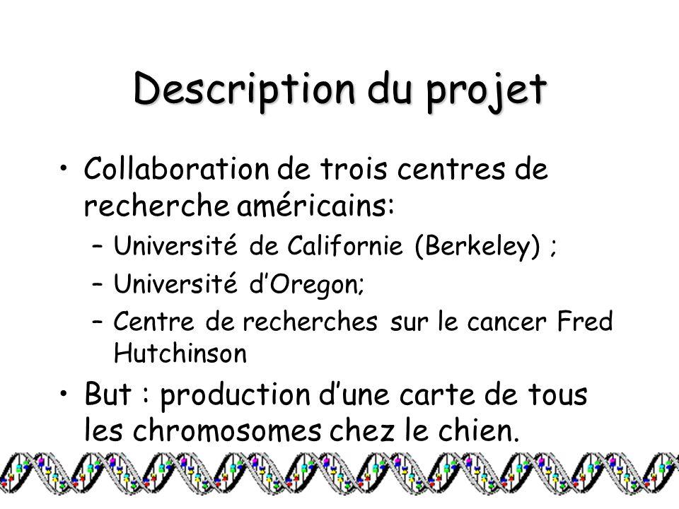 Description du projet Collaboration de trois centres de recherche américains: –Université de Californie (Berkeley) ; –Université dOregon; –Centre de r