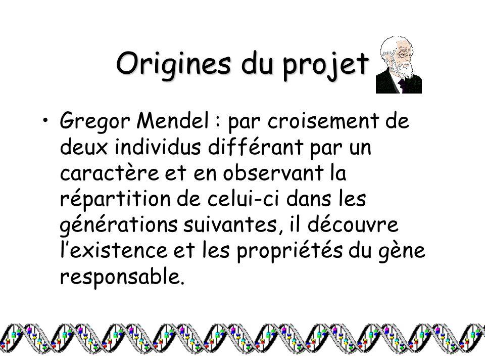 Origines du projet Gregor Mendel : par croisement de deux individus différant par un caractère et en observant la répartition de celui-ci dans les gén