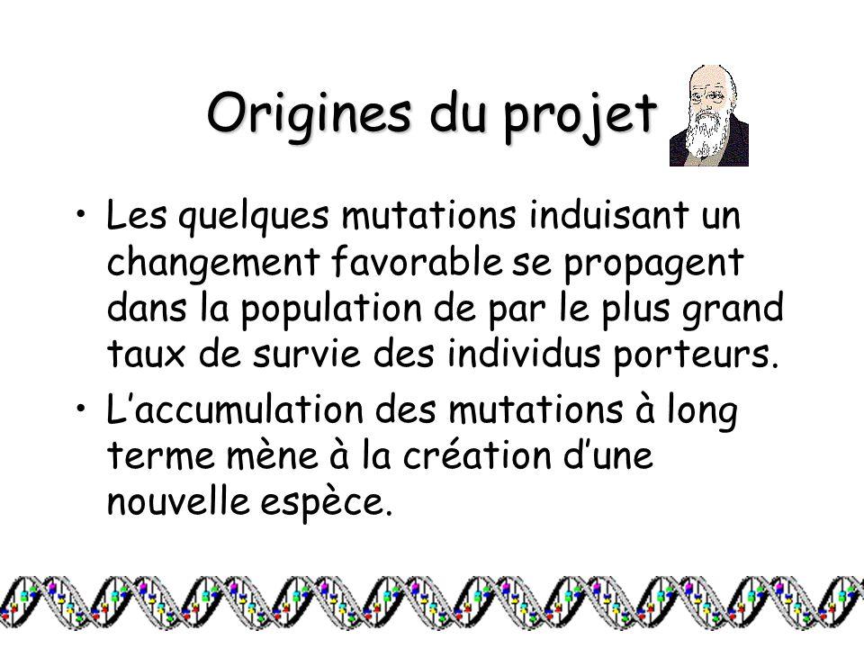 Origines du projet Les quelques mutations induisant un changement favorable se propagent dans la population de par le plus grand taux de survie des in