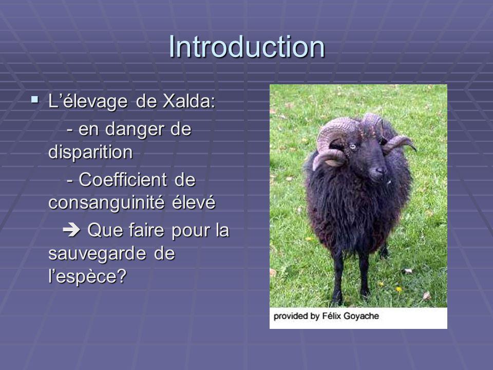 Introduction Lélevage de Xalda: Lélevage de Xalda: - en danger de disparition - en danger de disparition - Coefficient de consanguinité élevé - Coefficient de consanguinité élevé Que faire pour la sauvegarde de lespèce.