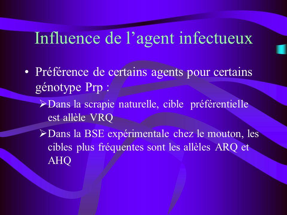 Influence de lagent infectueux Préférence de certains agents pour certains génotype Prp : Dans la scrapie naturelle, cible préférentielle est allèle V