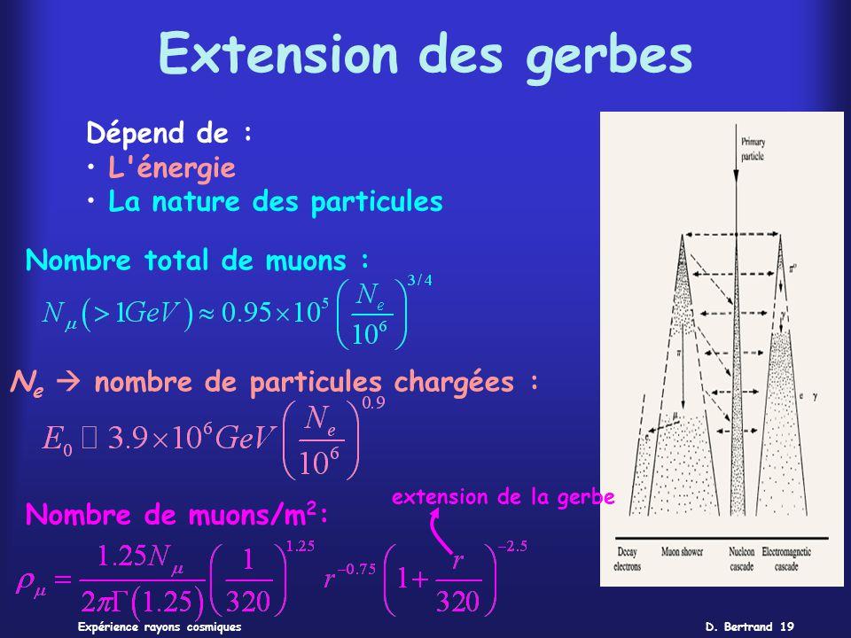 D. Bertrand 19Expérience rayons cosmiques Extension des gerbes Dépend de : L'énergie La nature des particules Nombre total de muons : N e nombre de pa