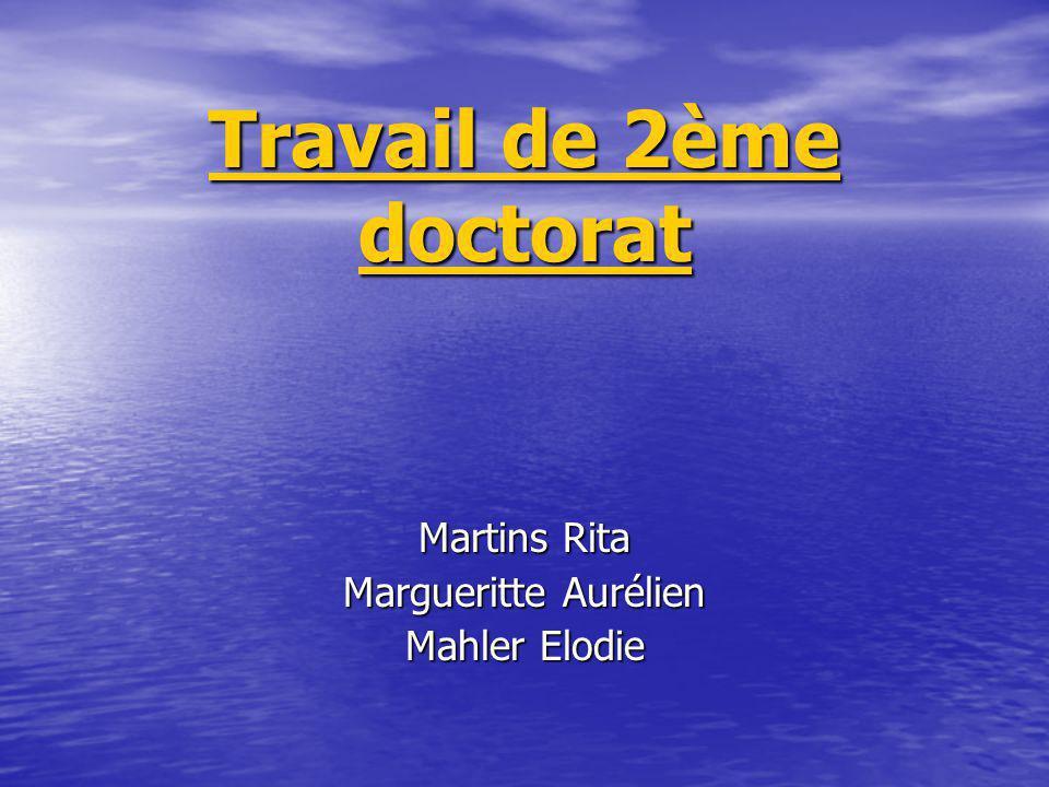 Travail de 2ème doctorat Martins Rita Margueritte Aurélien Mahler Elodie