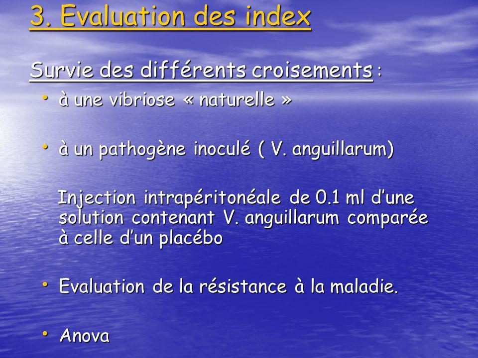 3) Fréquence de linfection à R. salmoninarum Extraction de lADN de lhomogénat des reins Extraction de lADN de lhomogénat des reins PCR dun fragment de