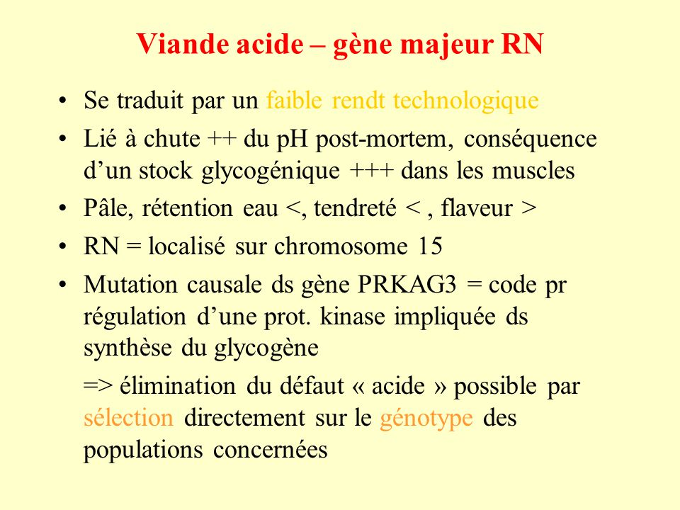 Viande acide – gène majeur RN Se traduit par un faible rendt technologique Lié à chute ++ du pH post-mortem, conséquence dun stock glycogénique +++ dans les muscles Pâle, rétention eau RN = localisé sur chromosome 15 Mutation causale ds gène PRKAG3 = code pr régulation dune prot.