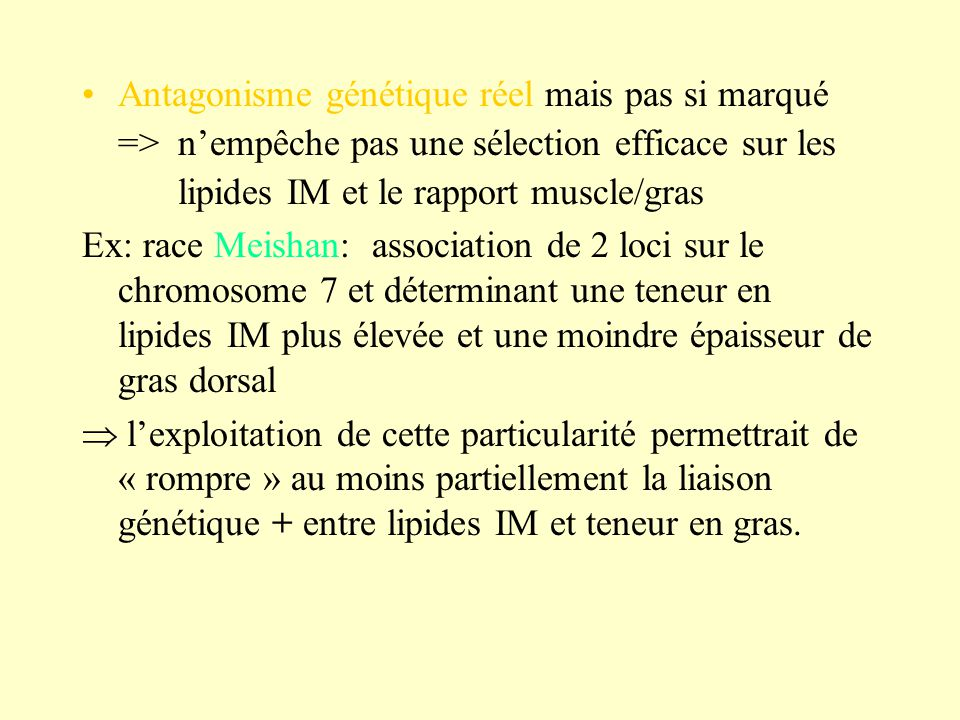 Antagonisme génétique réel mais pas si marqué => nempêche pas une sélection efficace sur les lipides IM et le rapport muscle/gras Ex: race Meishan: as