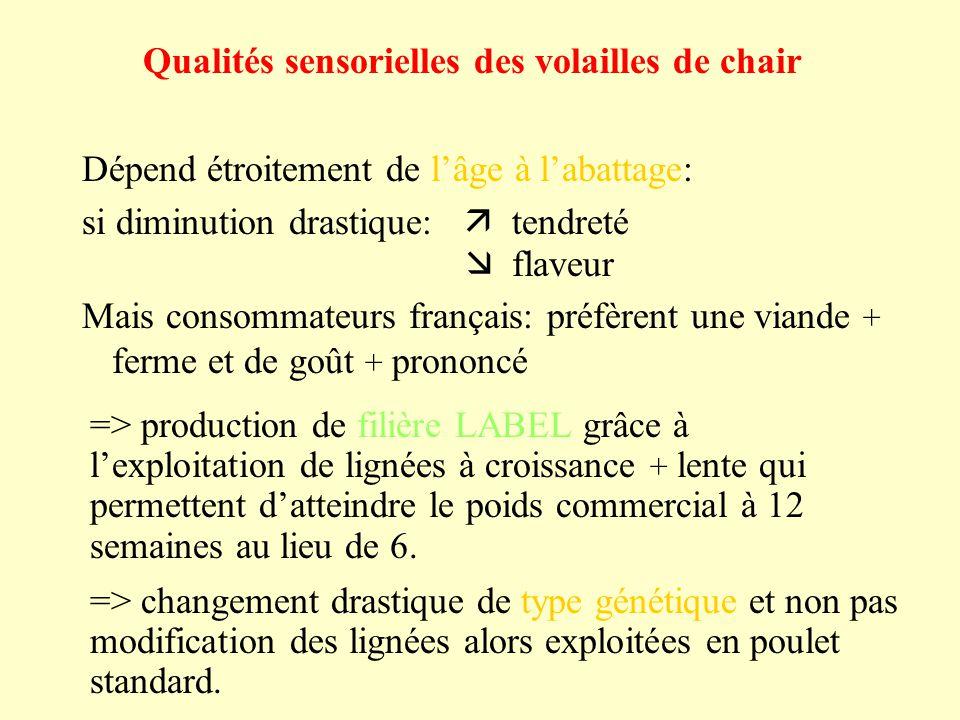 Qualités sensorielles des volailles de chair Dépend étroitement de lâge à labattage: si diminution drastique: tendreté flaveur Mais consommateurs fran