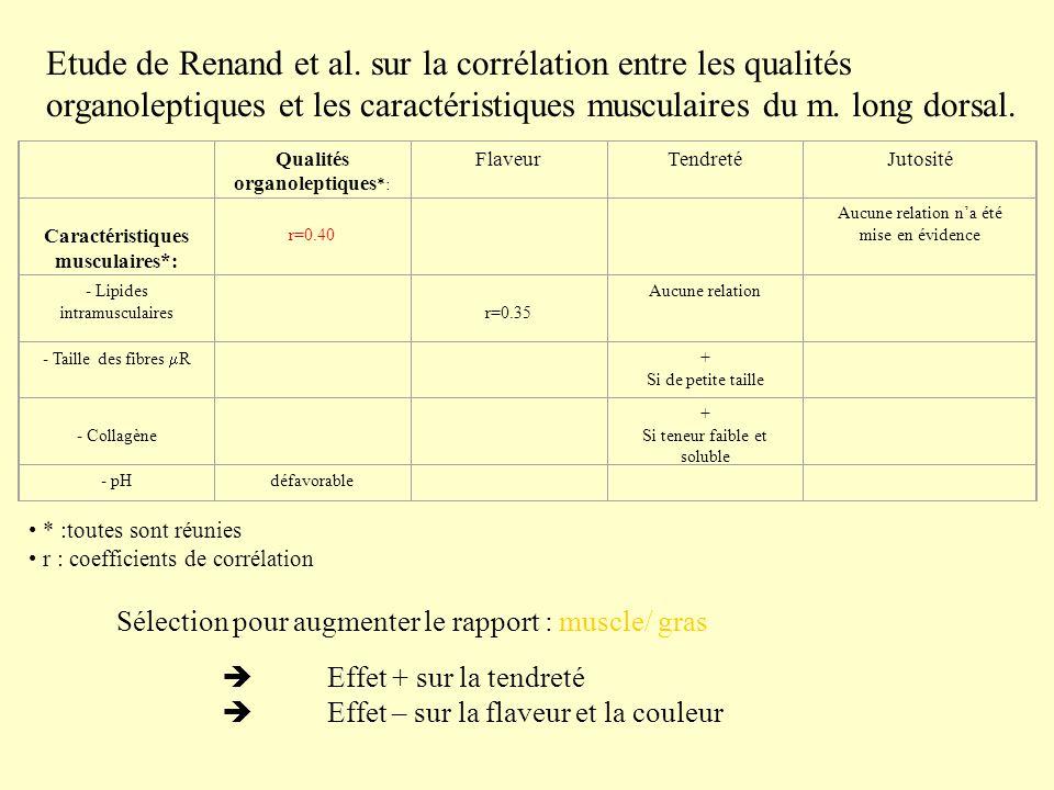 Etude de Renand et al. sur la corrélation entre les qualités organoleptiques et les caractéristiques musculaires du m. long dorsal. Qualités organolep