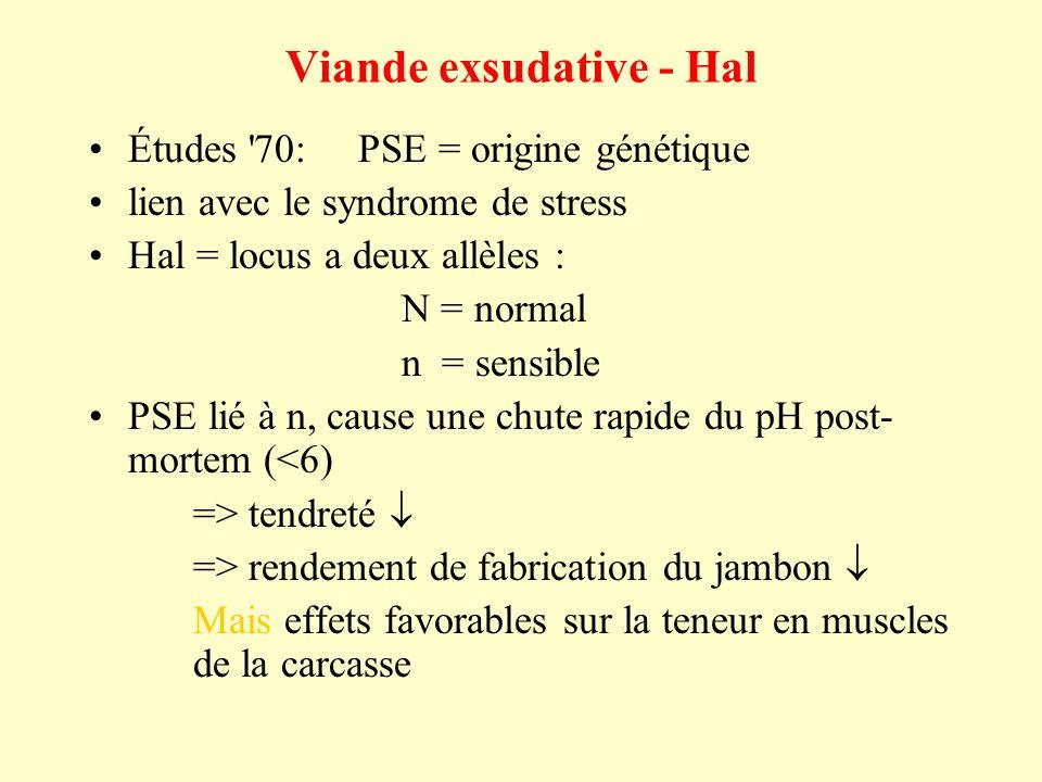 Viande exsudative - Hal Études 70: PSE = origine génétique lien avec le syndrome de stress Hal = locus a deux allèles : N = normal n = sensible PSE lié à n, cause une chute rapide du pH post- mortem (<6) => tendreté => rendement de fabrication du jambon Mais effets favorables sur la teneur en muscles de la carcasse