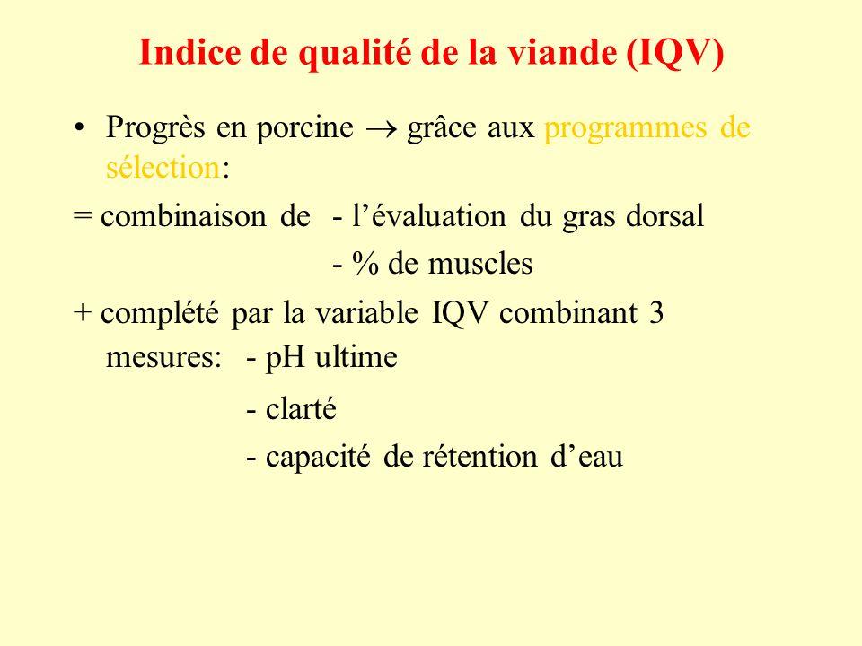 Indice de qualité de la viande (IQV) Progrès en porcine grâce aux programmes de sélection: = combinaison de- lévaluation du gras dorsal - % de muscles + complété par la variable IQV combinant 3 mesures:- pH ultime - clarté - capacité de rétention deau