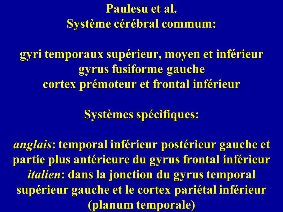 Paulesu et al. Système cérébral commum: gyri temporaux supérieur, moyen et inférieur gyrus fusiforme gauche cortex prémoteur et frontal inférieur Syst