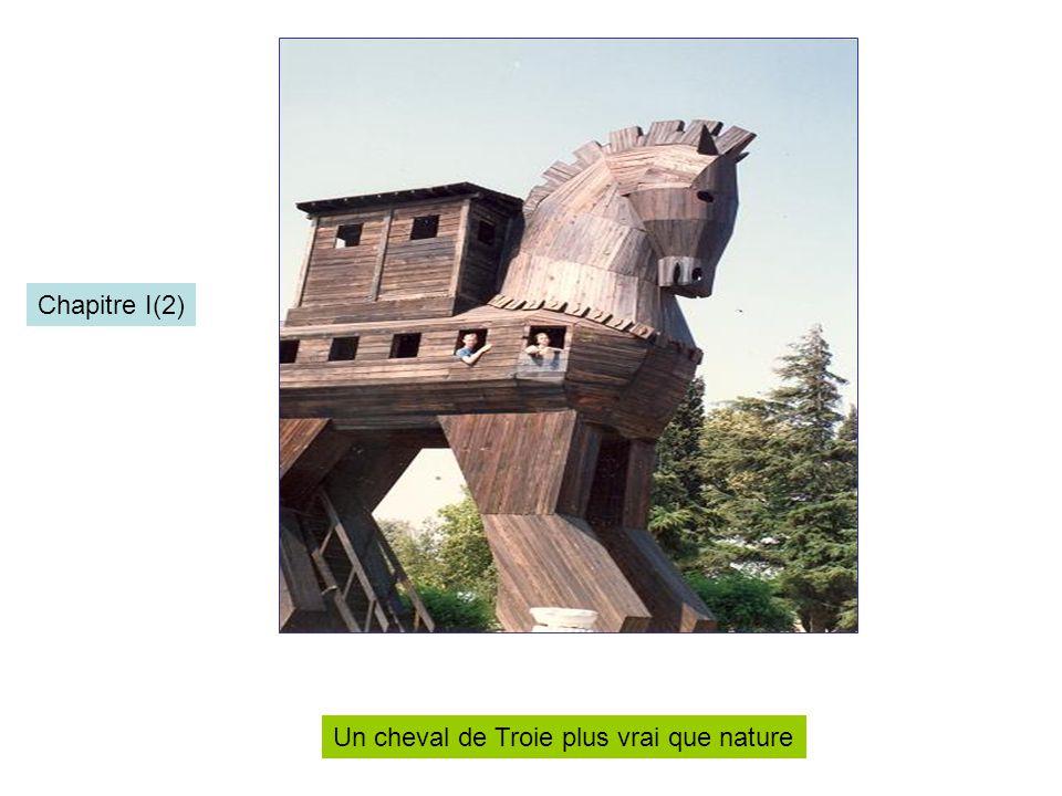 Un cheval de Troie plus vrai que nature Chapitre I(2)