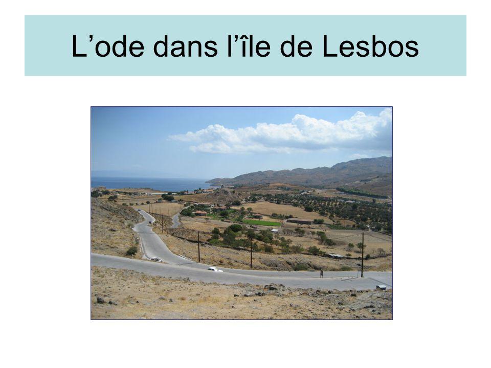 Lode dans lîle de Lesbos