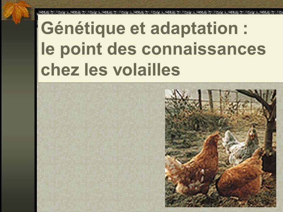 Bibliographie : Génétique et adaptation : le point des connaissances chez les volailles S.