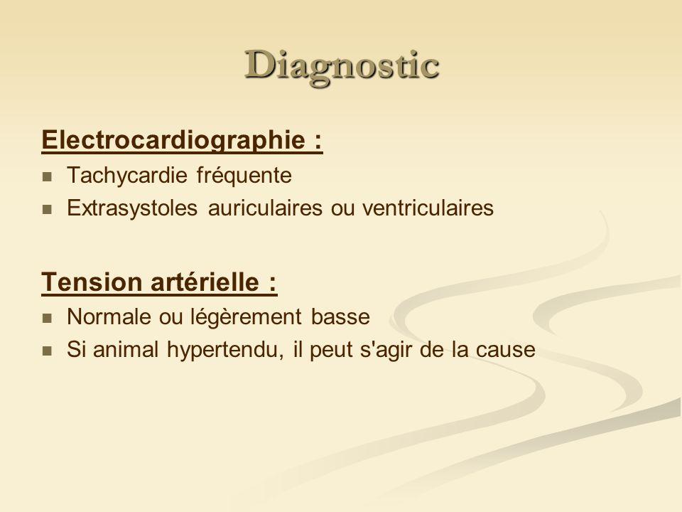 Diagnostic Electrocardiographie : Tachycardie fréquente Extrasystoles auriculaires ou ventriculaires Tension artérielle : Normale ou légèrement basse Si animal hypertendu, il peut s agir de la cause
