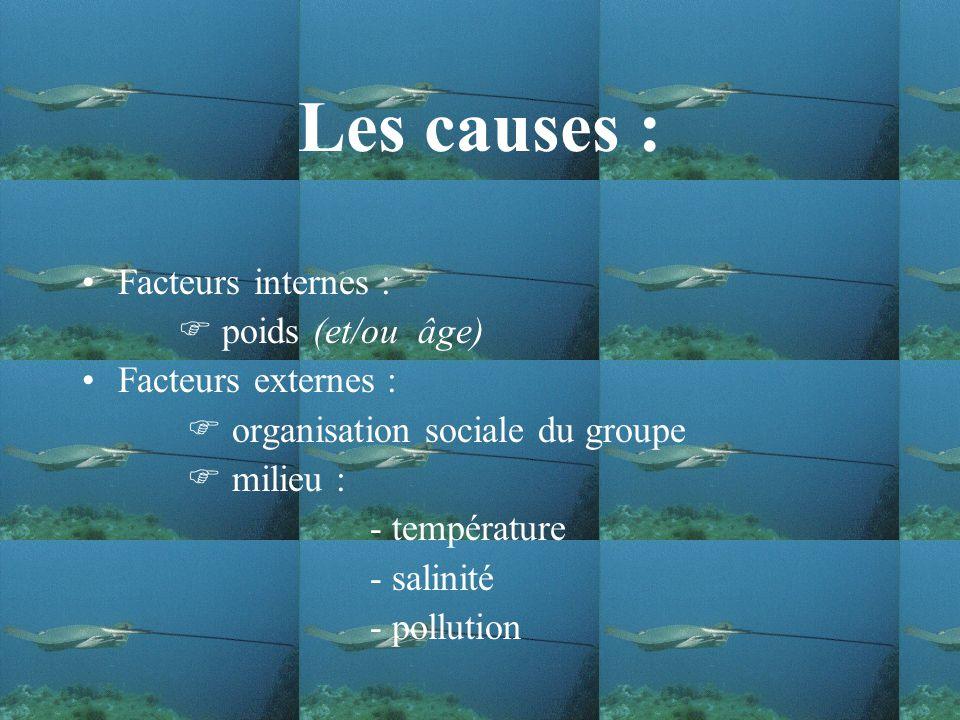 Les causes : Facteurs internes : poids (et/ou âge) Facteurs externes : organisation sociale du groupe milieu : - température - salinité - pollution