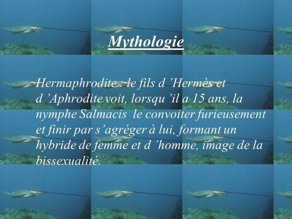 Mythologie Hermaphrodite : le fils d Hermès et d Aphrodite voit, lorsqu il a 15 ans, la nymphe Salmacis le convoiter furieusement et finir par sagréger à lui, formant un hybride de femme et d homme, image de la bissexualité.