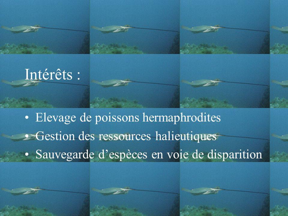 Intérêts : Elevage de poissons hermaphrodites Gestion des ressources halieutiques Sauvegarde despèces en voie de disparition