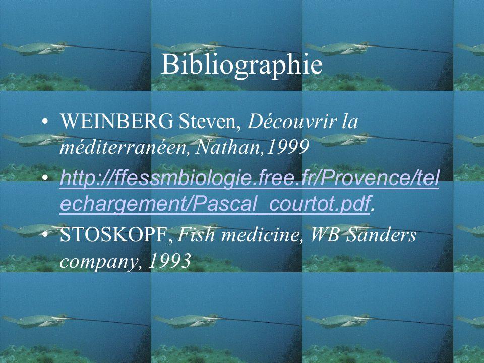 Bibliographie WEINBERG Steven, Découvrir la méditerranéen, Nathan,1999 http://ffessmbiologie.free.fr/Provence/tel echargement/Pascal_courtot.pdf.http://ffessmbiologie.free.fr/Provence/tel echargement/Pascal_courtot.pdf STOSKOPF, Fish medicine, WB Sanders company, 1993