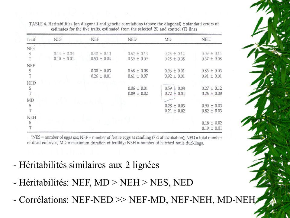 1.Héritabilité paternelle NEF, MD et NEH similaires 2.
