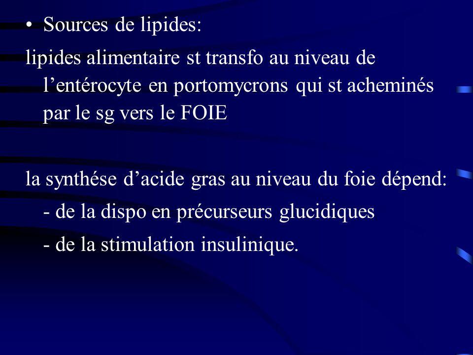 Sources de lipides: lipides alimentaire st transfo au niveau de lentérocyte en portomycrons qui st acheminés par le sg vers le FOIE la synthése dacide