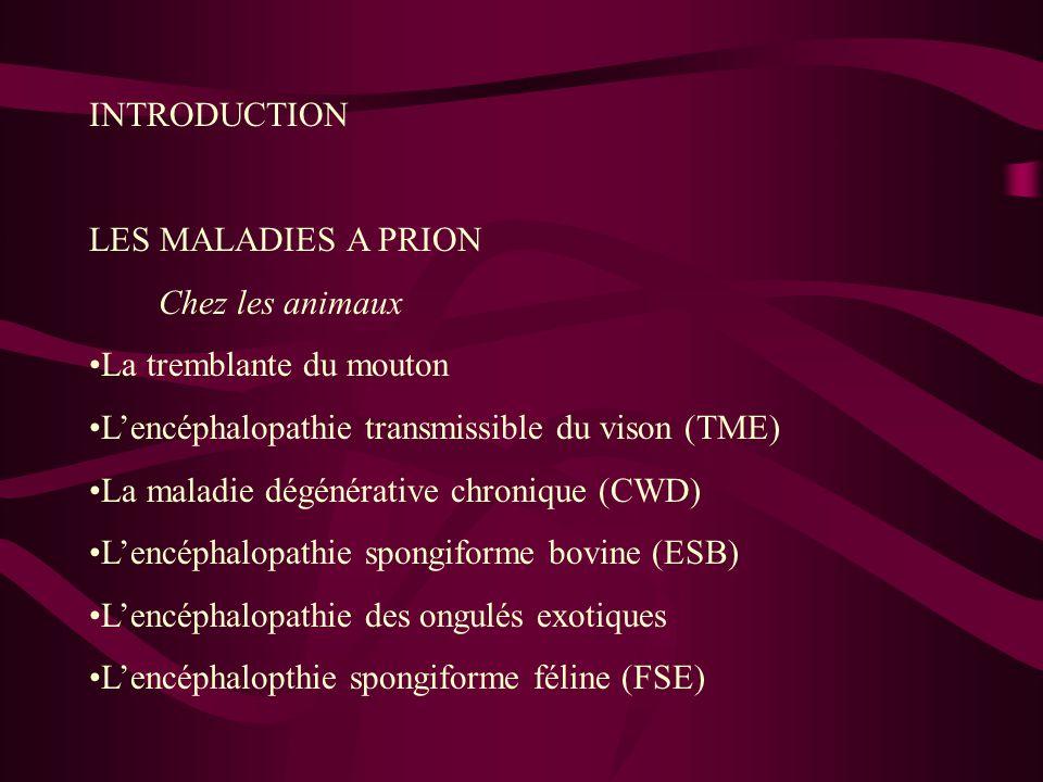 INTRODUCTION LES MALADIES A PRION Chez les animaux La tremblante du mouton Lencéphalopathie transmissible du vison (TME) La maladie dégénérative chron