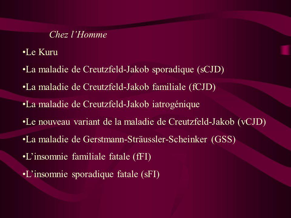 Chez lHomme Le Kuru La maladie de Creutzfeld-Jakob sporadique (sCJD) La maladie de Creutzfeld-Jakob familiale (fCJD) La maladie de Creutzfeld-Jakob ia