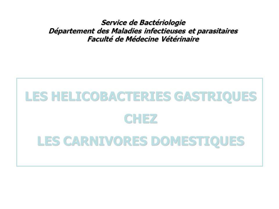 Service de Bactériologie Département des Maladies infectieuses et parasitaires Faculté de Médecine Vétérinaire LES HELICOBACTERIES GASTRIQUES CHEZ LES CARNIVORES DOMESTIQUES