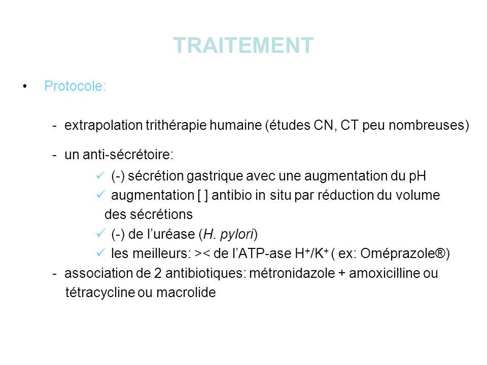 TRAITEMENT Protocole: - extrapolation trithérapie humaine (études CN, CT peu nombreuses) - un anti-sécrétoire: (-) sécrétion gastrique avec une augmentation du pH augmentation [ ] antibio in situ par réduction du volume des sécrétions (-) de luréase (H.
