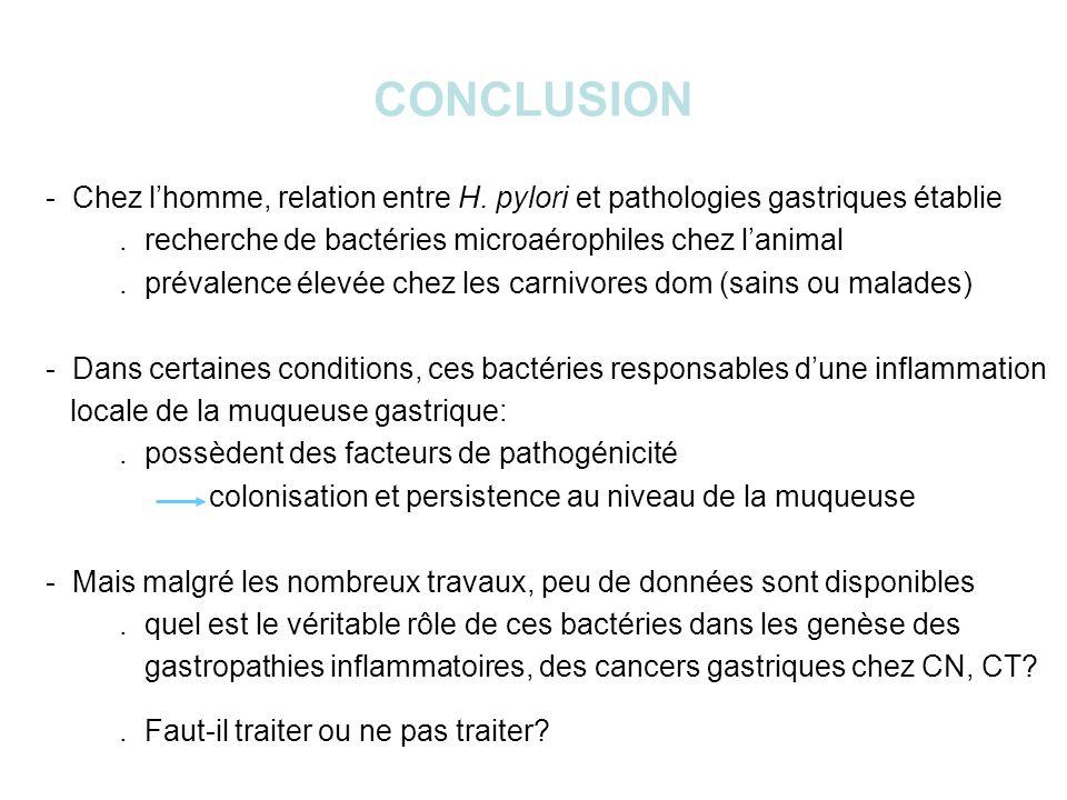 CONCLUSION - Chez lhomme, relation entre H.pylori et pathologies gastriques établie.