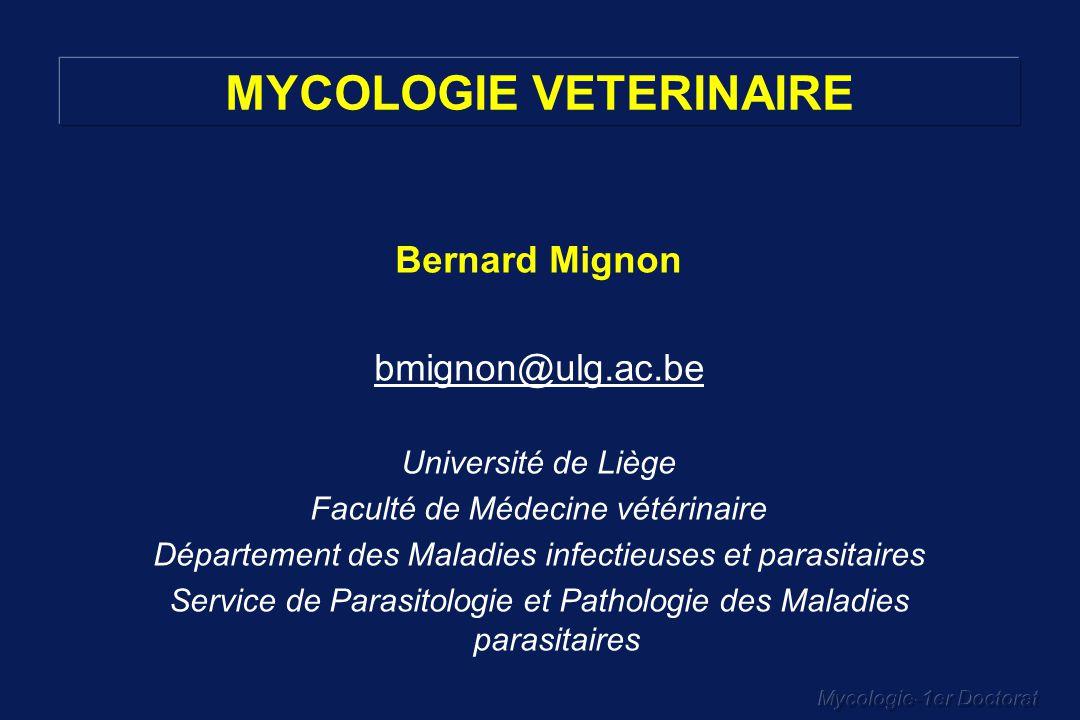 Mycologie-1er Doctorat Bernard Mignon bmignon@ulg.ac.be Université de Liège Faculté de Médecine vétérinaire Département des Maladies infectieuses et p