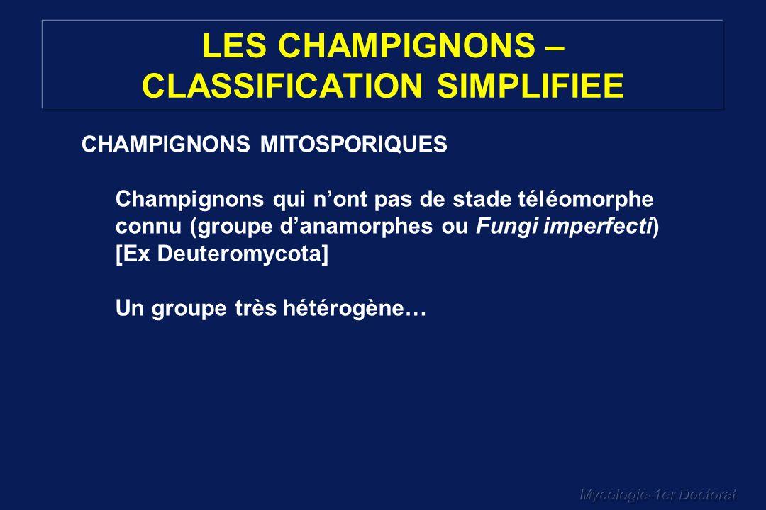 Mycologie-1er Doctorat LES CHAMPIGNONS – CLASSIFICATION SIMPLIFIEE CHAMPIGNONS MITOSPORIQUES Champignons qui nont pas de stade téléomorphe connu (grou
