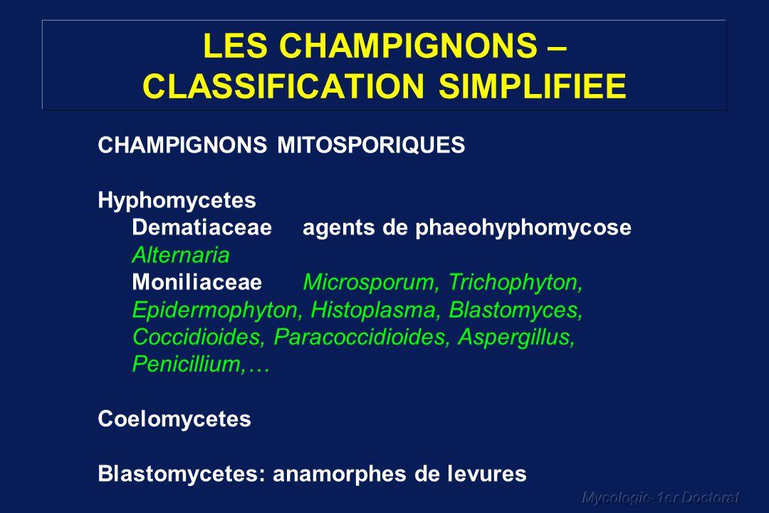 Mycologie-1er Doctorat LES CHAMPIGNONS – CLASSIFICATION SIMPLIFIEE CHAMPIGNONS MITOSPORIQUES Hyphomycetes Dematiaceaeagents de phaeohyphomycose Altern