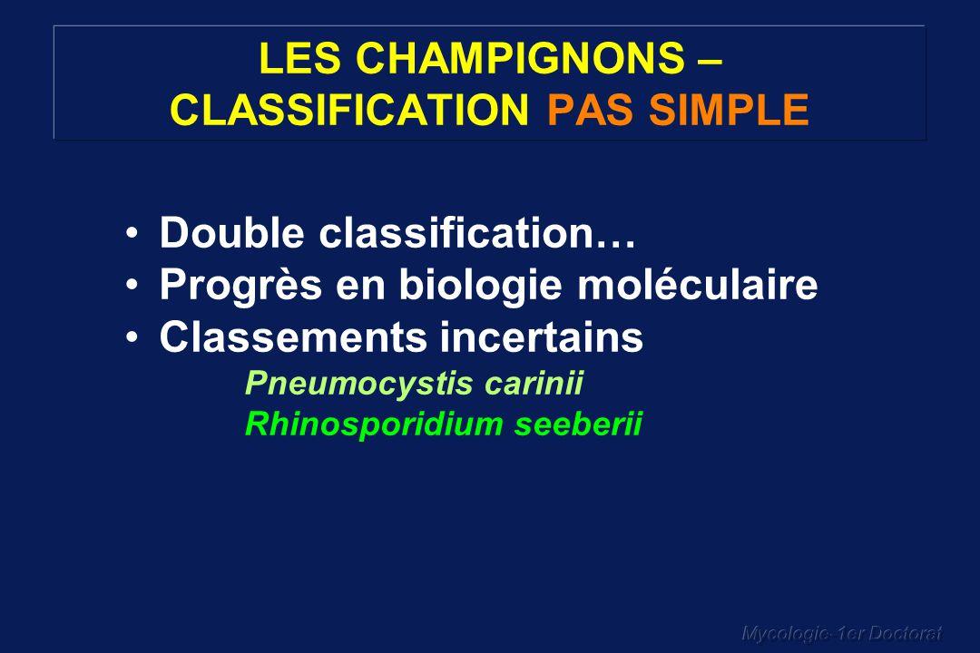 Mycologie-1er Doctorat LES CHAMPIGNONS – CLASSIFICATION PAS SIMPLE Double classification… Progrès en biologie moléculaire Classements incertains Pneum