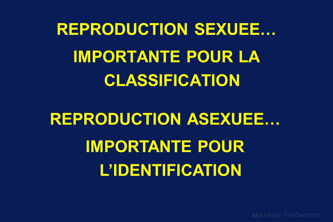 Mycologie-1er Doctorat REPRODUCTION SEXUEE… IMPORTANTE POUR LA CLASSIFICATION REPRODUCTION ASEXUEE… IMPORTANTE POUR LIDENTIFICATION