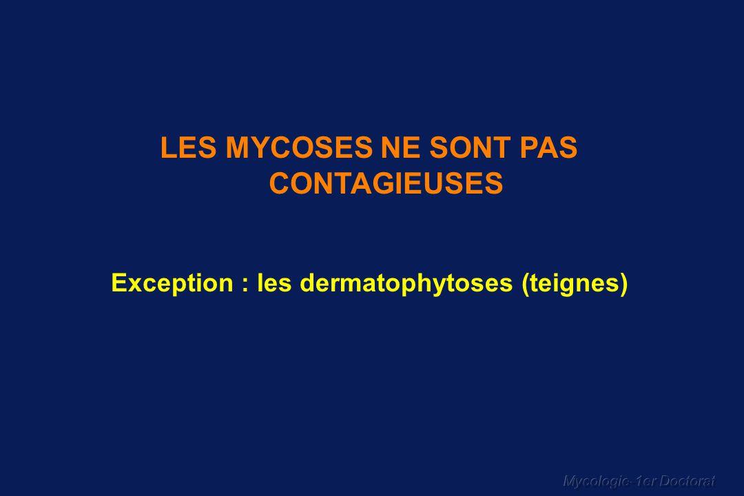 Mycologie-1er Doctorat LES MYCOSES NE SONT PAS CONTAGIEUSES Exception : les dermatophytoses (teignes)