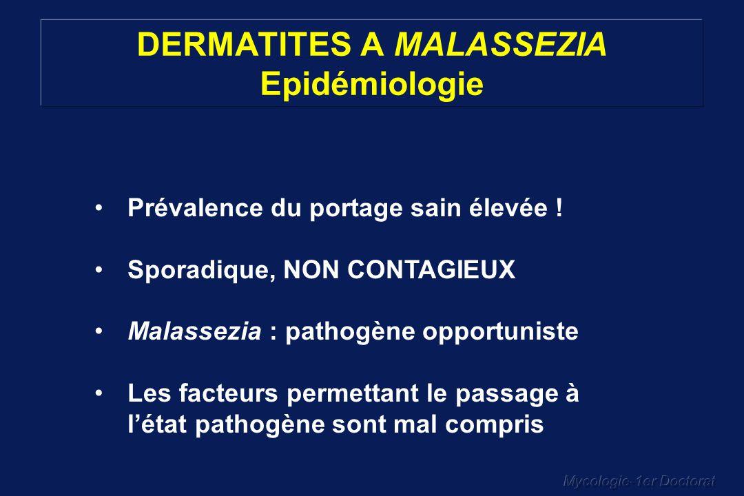 Mycologie-1er Doctorat DERMATITES A MALASSEZIA Epidémiologie Prévalence du portage sain élevée ! Sporadique, NON CONTAGIEUX Malassezia : pathogène opp