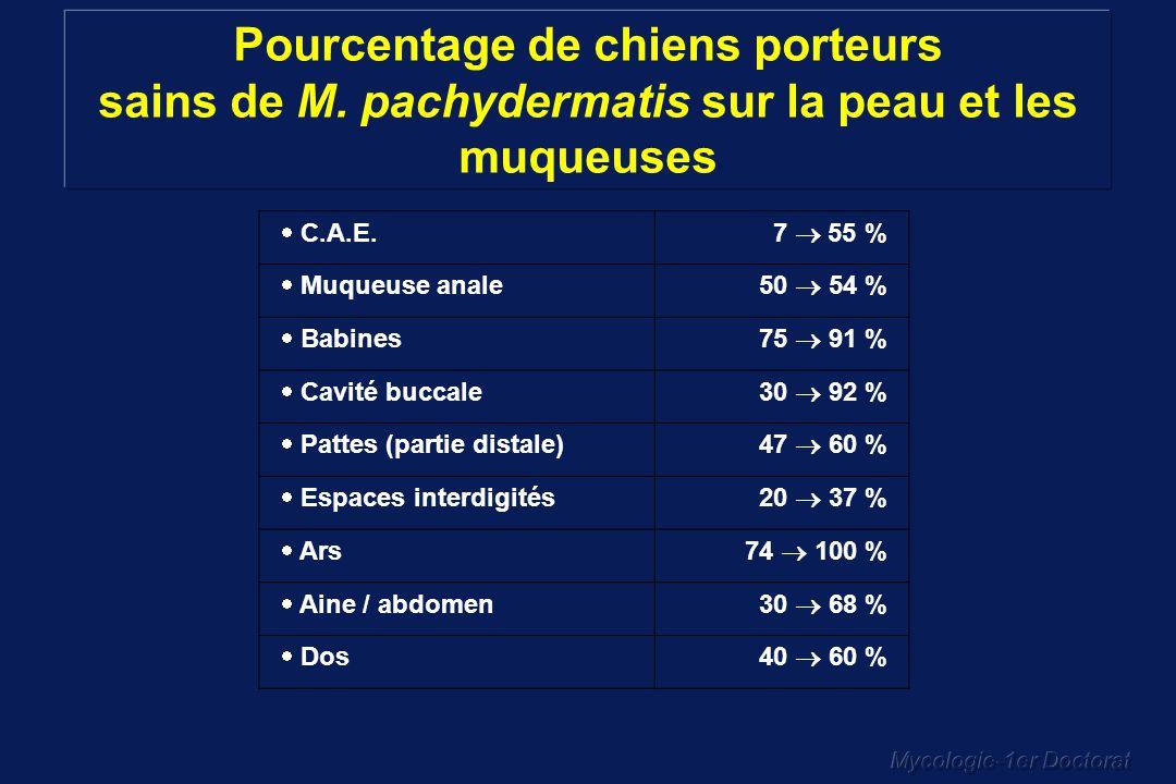 Mycologie-1er Doctorat Pourcentage de chiens porteurs sains de M. pachydermatis sur la peau et les muqueuses C.A.E.7 55 % Muqueuse anale50 54 % Babine