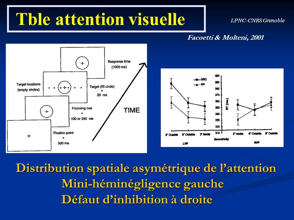 LPNC-CNRS Grenoble Tble attention visuelle Facoetti & Molteni, 2001 Distribution spatiale asymétrique de lattention Mini-héminégligence gauche Mini-hé