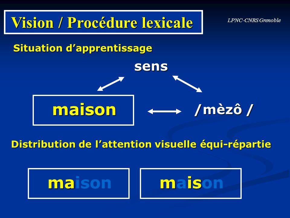 LPNC-CNRS Grenoble Vision / Procédure lexicale Situation dapprentissage sens maison /mèzô / Distribution de lattention visuelle équi-répartie ma maiso