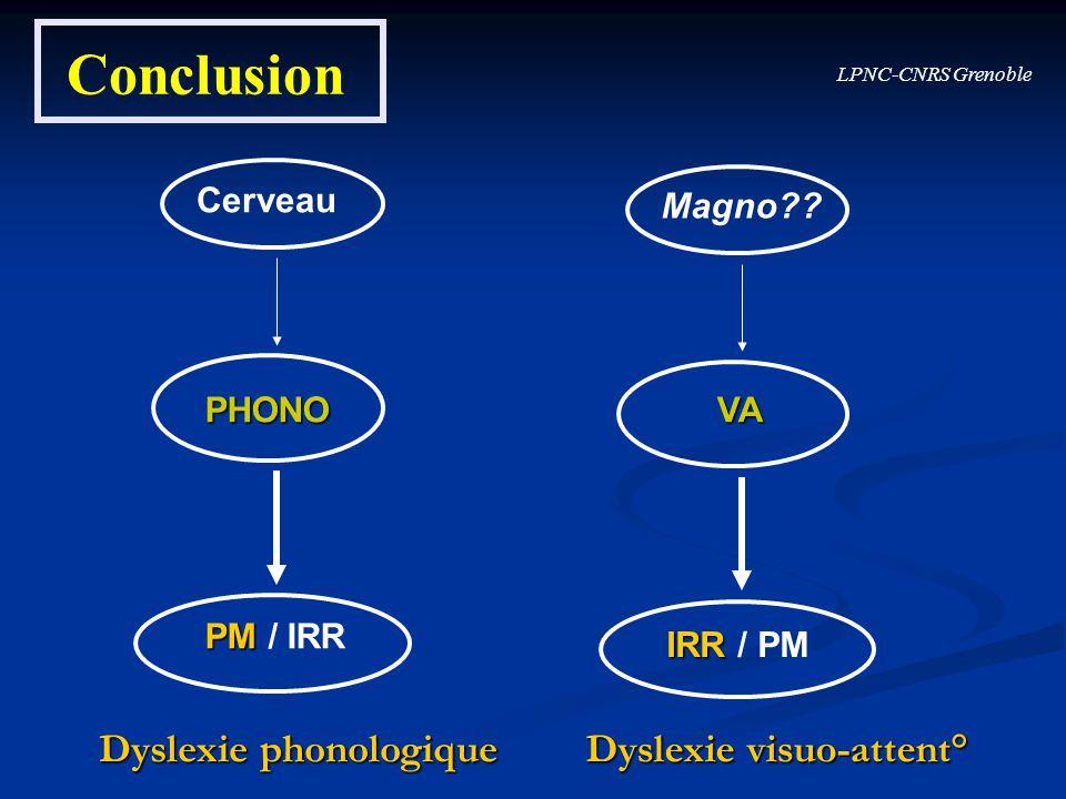 LPNC-CNRS Grenoble Conclusion Cerveau PHONO PM PM / IRR Magno?? VA IRR IRR / PM Dyslexie phonologique Dyslexie visuo-attent°