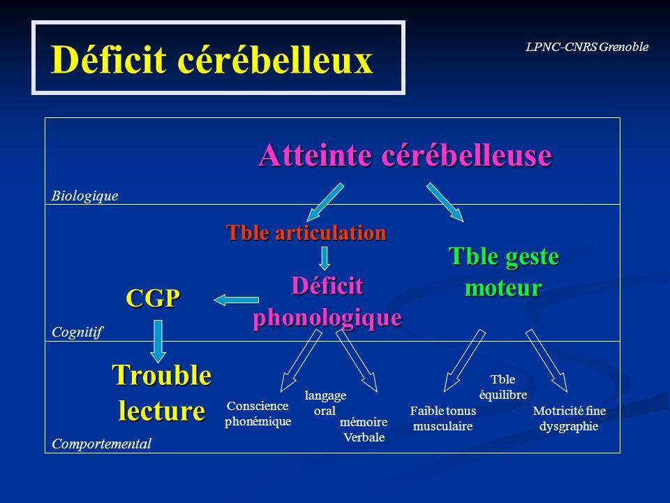 LPNC-CNRS Grenoble Déficit cérébelleux Biologique Cognitif Comportemental CGP Déficitphonologique Troublelecture Conscience phonémique langage oral mé
