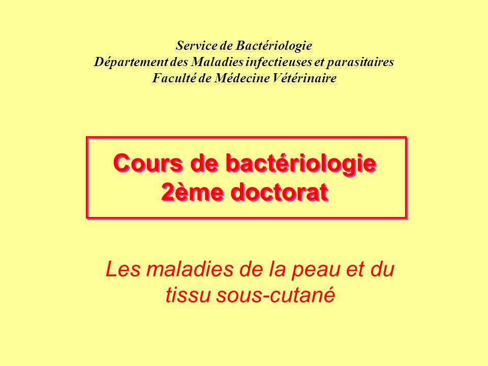 Diagnostic –clinique sur base des boîteries et des lésions –cas individuels pour abcès, furoncles et pododermatites –grande contagiosité pour piétin et Mortelaro Traitement -individuel (abcès, furoncles, pododermatites) -de troupeau (piétin, Mortellaro) -antibiothérapie générale: pénicilline G/streptomycine, érythromycine, ampicilline Tsu, tétracyclines (Mortellaro), lincomycine/spectinomycine (piétin) ceftiofur pendant 1 à 2 semaines (problème de diffusion locale des antibiotiques) -topiques avec bandage ou pédiluve: CuSO 4 ou ZnSO 4 (5%), formaline (5-10%) antibiotiques 2 à 3 fois par semaine selon évolution -parage et nettoyage (enlever les tissus morts) des pieds Les maladies des tissus cutanés