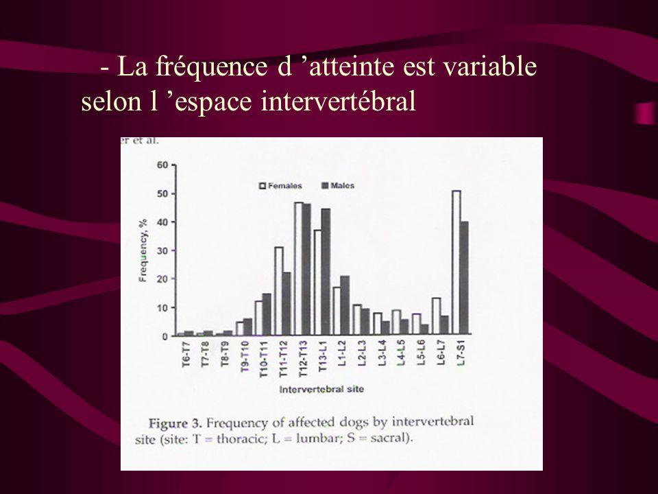 - La fréquence d atteinte est variable selon l espace intervertébral