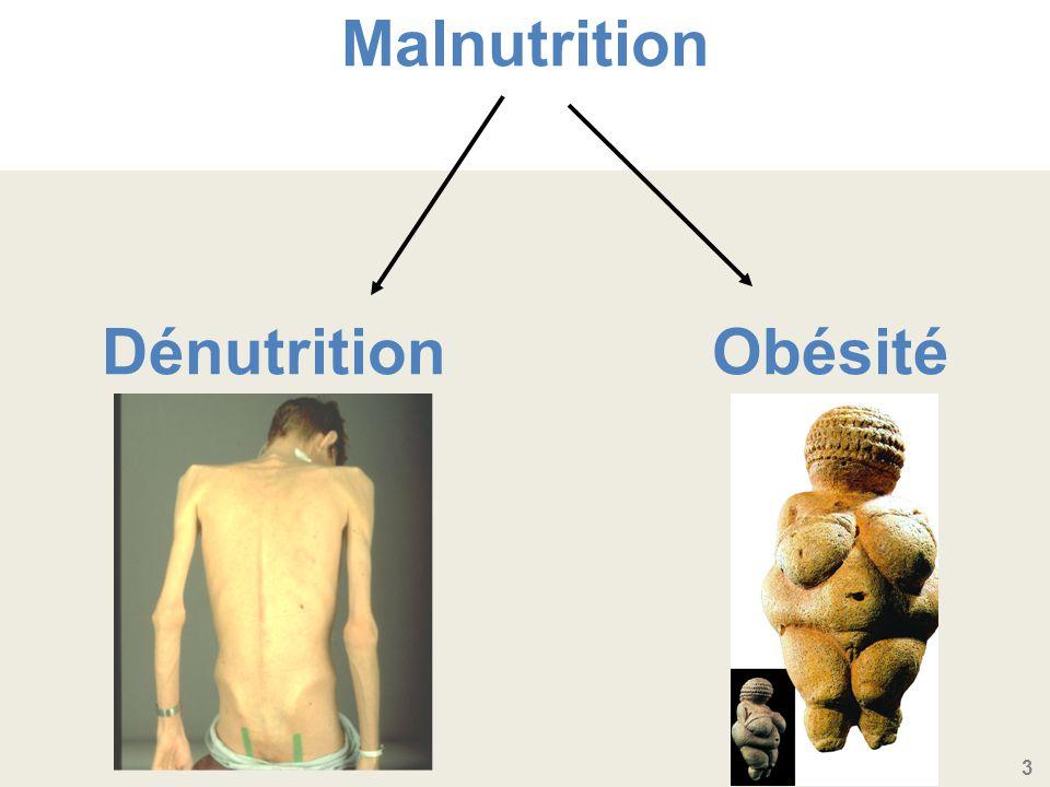 3 Malnutrition Dénutrition Obésité