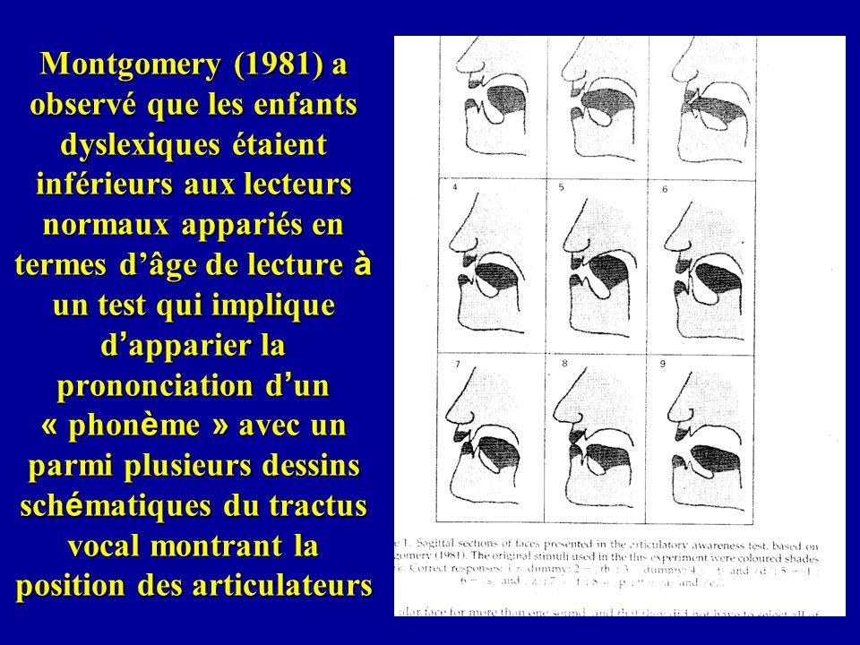 Montgomery (1981) a observé que les enfants dyslexiques étaient inférieurs aux lecteurs normaux appariés en termes dâge de lecture à un test qui impli