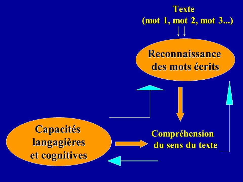 Texte (mot 1, mot 2, mot 3...) Compréhension du sens du texte Texte (mot 1, mot 2, mot 3...) Compréhension du sens du texteReconnaissance des mots écr